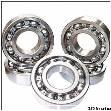 ISO NA4901-2RS needle roller bearings